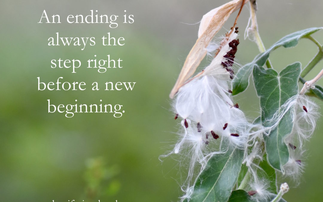 Endings are Simply the Step Before New Beginnings